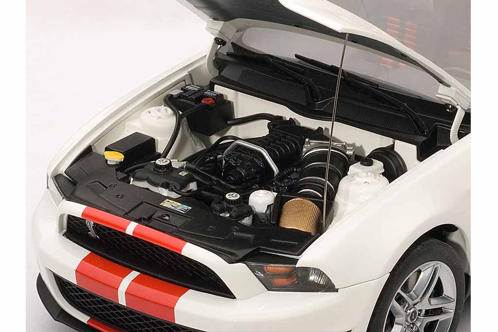 FORD SHELBY GT500 2010 (4)